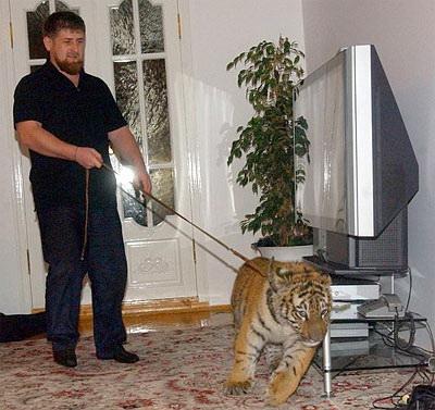 Рамзан Кадыров рост вес