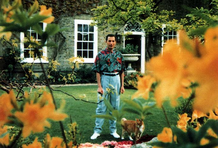 Личная жизнь Фредди Меркьюри - фото, отношения