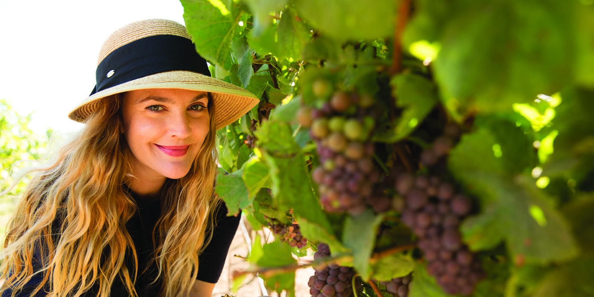 Звезды, владеющие собственным виноградником