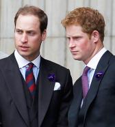 Стала известна истинная причина ссоры между принцами Уильямом и Гарри
