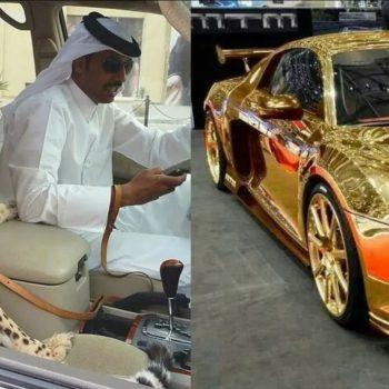 Арабские шейхи и их покупки